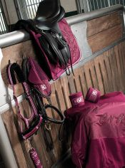 Click to enlarge image Cavallo-Horsefashion.jpg